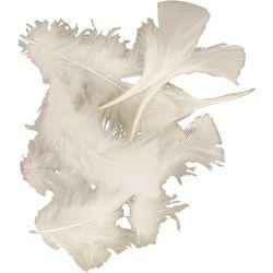 Feathers, size 7-8 cm, approx. 375 pc, white, 50g.