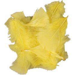 Feathers, size 7-8 cm, yellow, 50g.