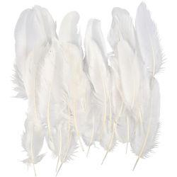Feathers, approx. 15 cm, white, 70pcs.
