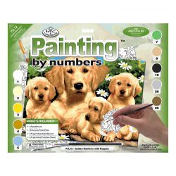 Junior Painting By Numbers Set: Golden Retriever With Puppies