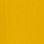 Cadmium Yellow Medium (Series 3)