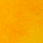 Cadmium Yellow Hue (Series 1)
